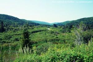 Vallée du parc national de Forillon