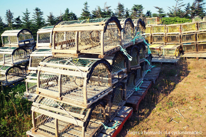Cages à homards