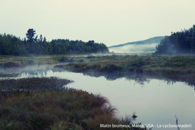 Matin brumeux, Maine