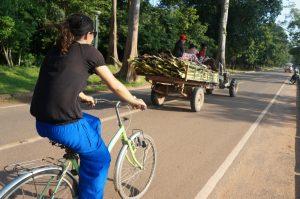 angkor, temps, cambodge, cyclotourisme, temples angkor à vélo