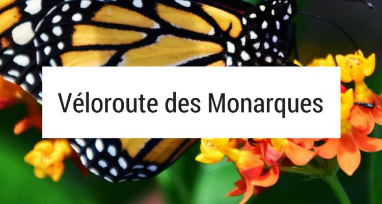 cyclotourisme - amérique du nord à vélo - mexique à vélo - états-unis à vélo - usa vélo - canada vélo - véloroute des monarques - papillons monarques